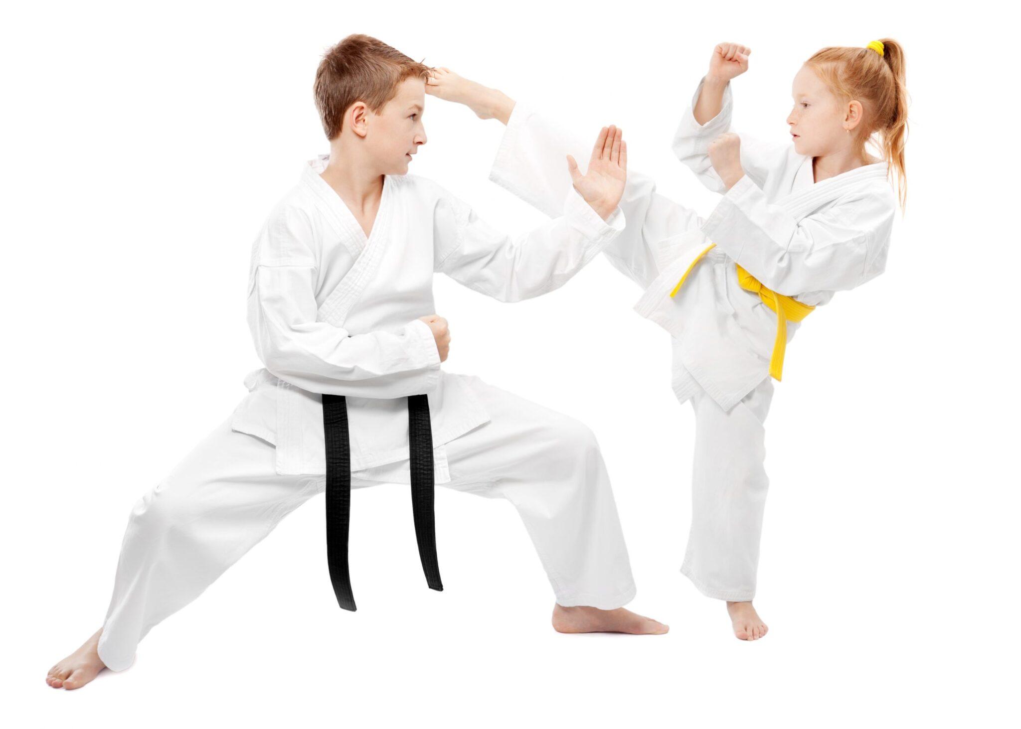 kids martial arts- karate class, taekwondo class