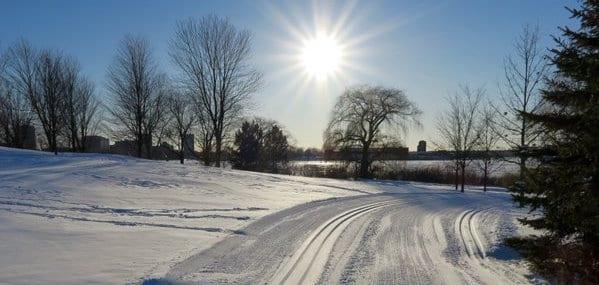 cross country ski tracks on the SJAM winter trail